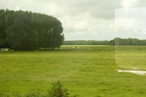 tren-amsterdam-bruselas.JPG